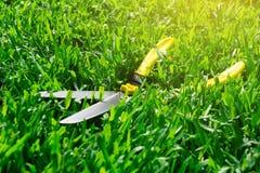 Saxen klippte gräset på gräsmattan arkivfoton