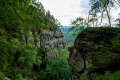 Saxon ландшафт Швейцарии скалистый и зеленый деревьев стоковая фотография rf