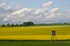 Saxon Швейцария, Германия Стоковое фото RF