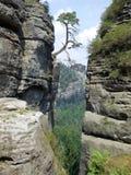 Saxon Швейцария Стоковые Фотографии RF