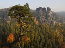 saxon switzerland Arkivbild