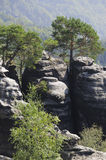 Saxony Switzerland Royalty Free Stock Images