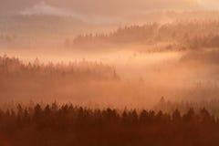 Saxony Szwajcaria park Fotografia Royalty Free