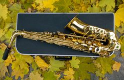 Saxophone with case. Fall Royalty Free Stock Photo