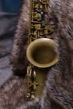 saxophone d'alto Photo stock