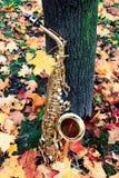 Saxophone d'alto en parc d'automne Photographie stock libre de droits
