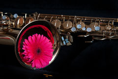 Saxophone with flower Royalty Free Stock Image