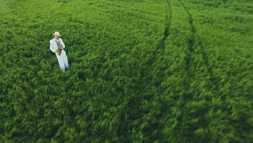 Saxophonist stands in the middle of green fields. Aerial photography. stock video footage