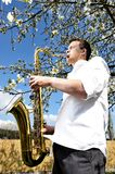 Saxy player men Stock Images