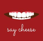 Say cheese card. Vector illustration of the Say cheese card Stock Image