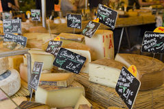 CHEESE market. Selection of cheese in market Stock Images