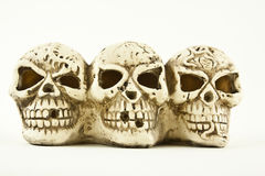 Say Cheese Skulls Stock Image