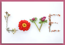 Say It With Flowers:  Love. Say it with flowers. Flowers can say so many things, I love you, I'm sorry, Get well.... here it sends the message of love.  **Also Royalty Free Stock Photo