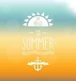 Say Hello to Summer hand drawn label. Mesh background. Vector illustration Stock Photos