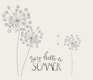 Say Hello to Summer Natural Background Vector Illustration. EPS10 Royalty Free Stock Photography