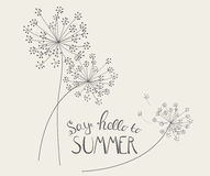 Say Hello to Summer Natural Background Vector Illustration. EPS10 Stock Image