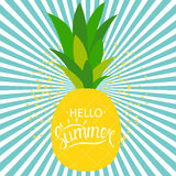 Say Hello to Summer Natural Background Vector Illustration Royalty Free Stock Images