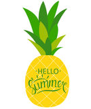Say Hello to Summer Natural Background Vector Illustration Stock Photo