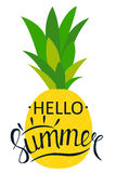 Say Hello to Summer Natural Background Vector Illustration Royalty Free Stock Image