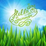 Say hello to summer Royalty Free Stock Images