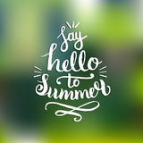 Say Hello To Summer vector illustration, background. Fun quote hipster design logo. Hand lettering inspirational poster. Say Hello To Summer vector illustration Royalty Free Stock Images