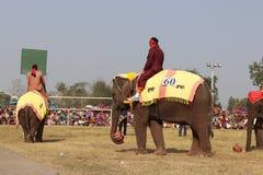 Sayaboury,老挝- 2018年2月17日:大象节日在Sayaboury每年2月发生 这是为了促进骗局 免版税库存照片