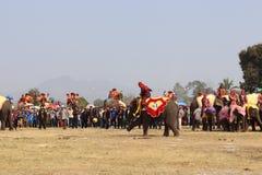Sayaboury,老挝- 2018年2月17日:大象节日在Sayaboury每年2月发生 这是为了促进骗局 库存图片