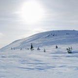 Sayan mountains. Ergaky. Royalty Free Stock Photo