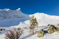 Sayan winter Sunny day on the wild Kanu Stock Photo