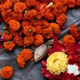 Sayapatri. Indian Flowers Sayapatri for pudja Stock Images