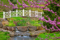 Sayen Park Botanical Gardens Ornamental Bridge Stock Photos