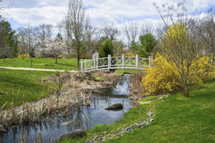 Sayen Park Spring Stream Royalty Free Stock Photos
