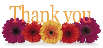 Saying Thank You with Flowers Stock Images