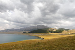 Sayram Lake Royaltyfri Fotografi