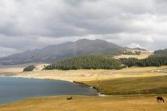 Sayram Lake Arkivfoton