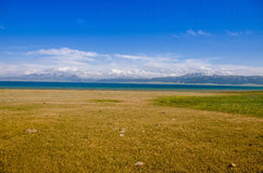Sayram Lake by the meadow, on the plateau Royalty Free Stock Image