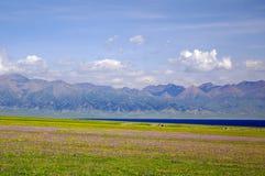 Sayram Lake scenery. Lake,Sea Of Flowers,The distance hills Royalty Free Stock Photos