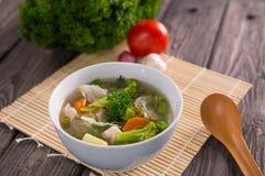 Sayur sop ή φυτική σούπα στοκ εικόνα με δικαίωμα ελεύθερης χρήσης