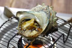 Sazae no tsuboyaki, grilled horned turban shell. Japanese food stock photo