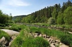 河sazava 图库摄影