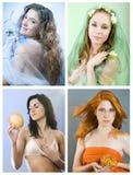Sazona el collage Imagen de archivo libre de regalías