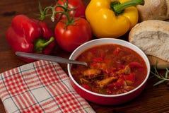 Sazona la sopa con pimienta Imagen de archivo libre de regalías