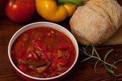 Sazona la sopa con pimienta Fotografía de archivo