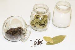 Sazone la coctelera y varios pequeños tarros del bol de vidrio con pimienta y pequeños con las diversas especias en un fondo lige Imagenes de archivo