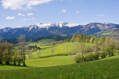 Sbarco alpino dell'azienda agricola immagine stock libera da diritti