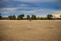 Sbarco con terra asciutta ed incrinata Deserto Fotografie Stock Libere da Diritti