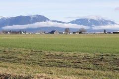 Sbarco dell'azienda agricola della valle della montagna Fotografie Stock Libere da Diritti
