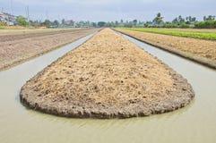 Sbarco della preparazione del terreno per coltura di verdure Fotografia Stock