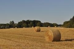Sbarco di agricoltura con i rulli della paglia Fotografie Stock