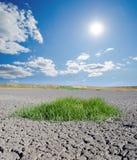 Sbarco di siccità Immagini Stock Libere da Diritti